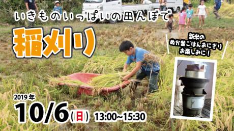 2019稲刈りfacecook