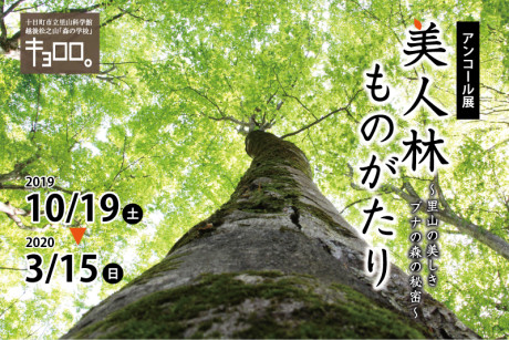 2019aki_kikakuten_bijinbayashi