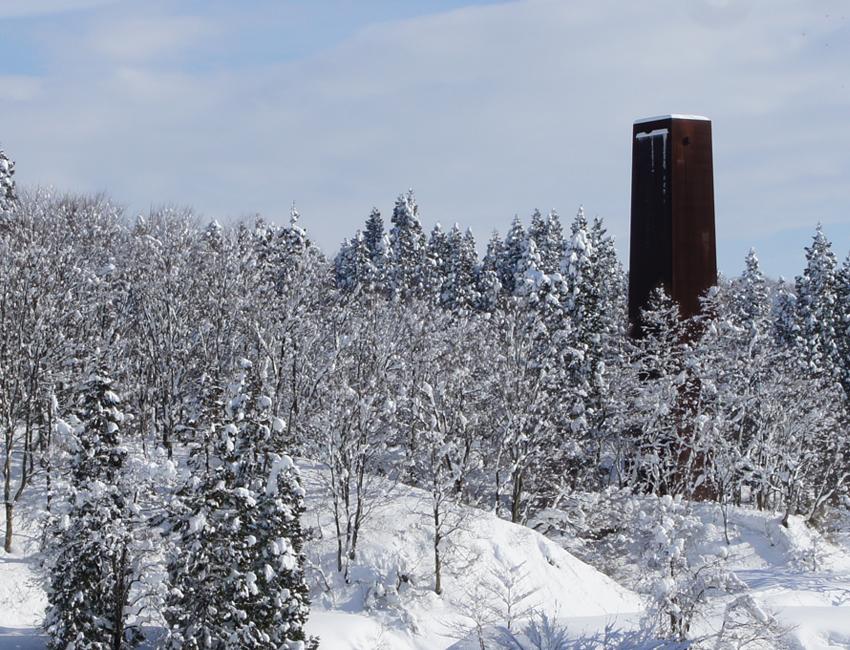 冬のキョロロの森