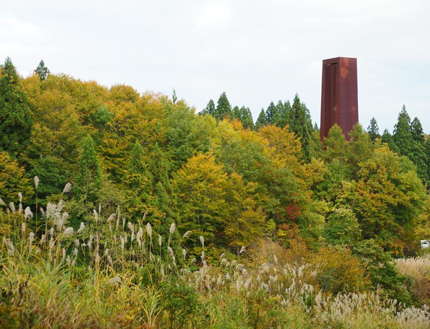 秋のキョロロの森