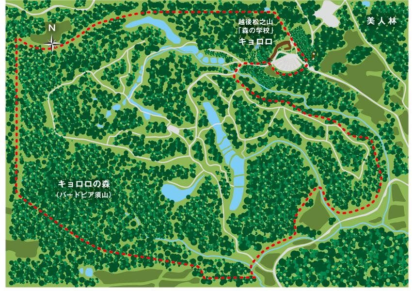キョロロの森