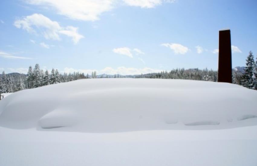 ふんわりと雪に覆われたキョロロ