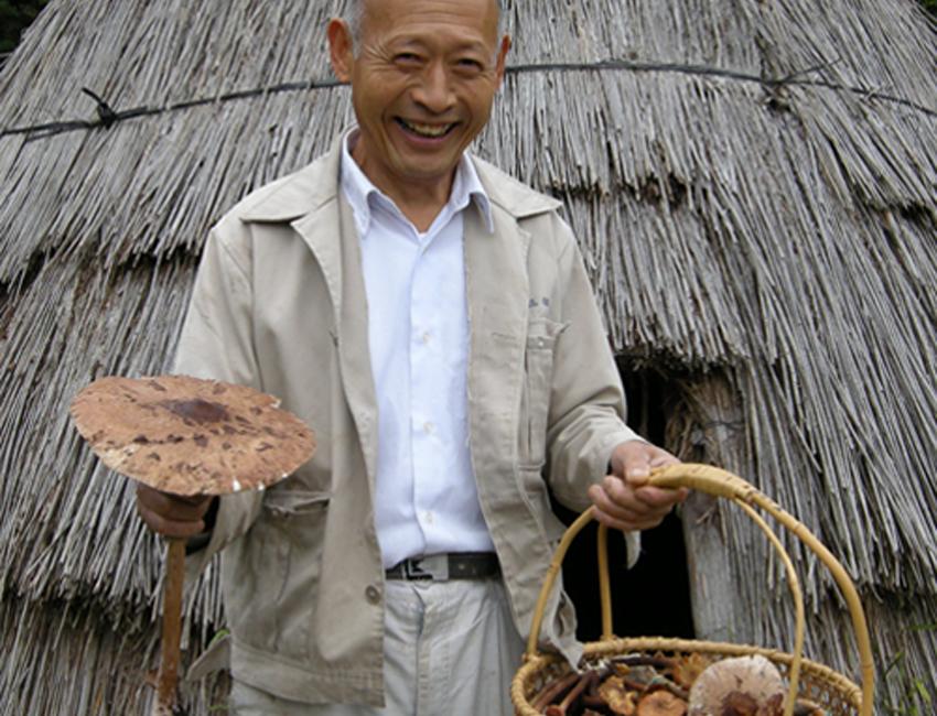 山菜・キノコの写真