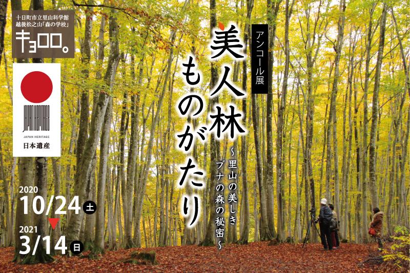 上映 学校 森 館 の