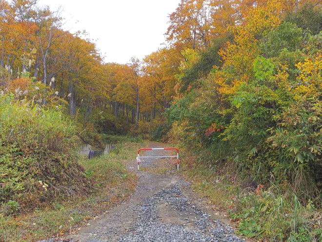 信越トレイルへの道