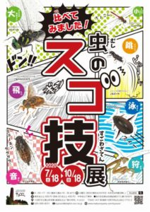 【夏季企画展】比べてみました!虫のスゴ技展 @ 「森の学校」キョロロ