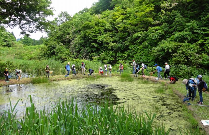 自然体験プログラム 池