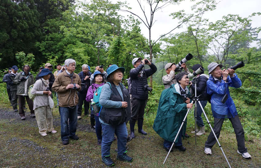 巣箱設置や繁殖調査を通じた野鳥の保全活動