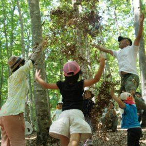 ブナの森のようちえん @ 「森の学校」キョロロ